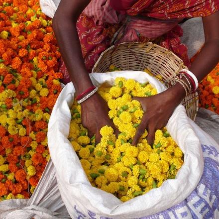 Colourful flower market in Kolkata