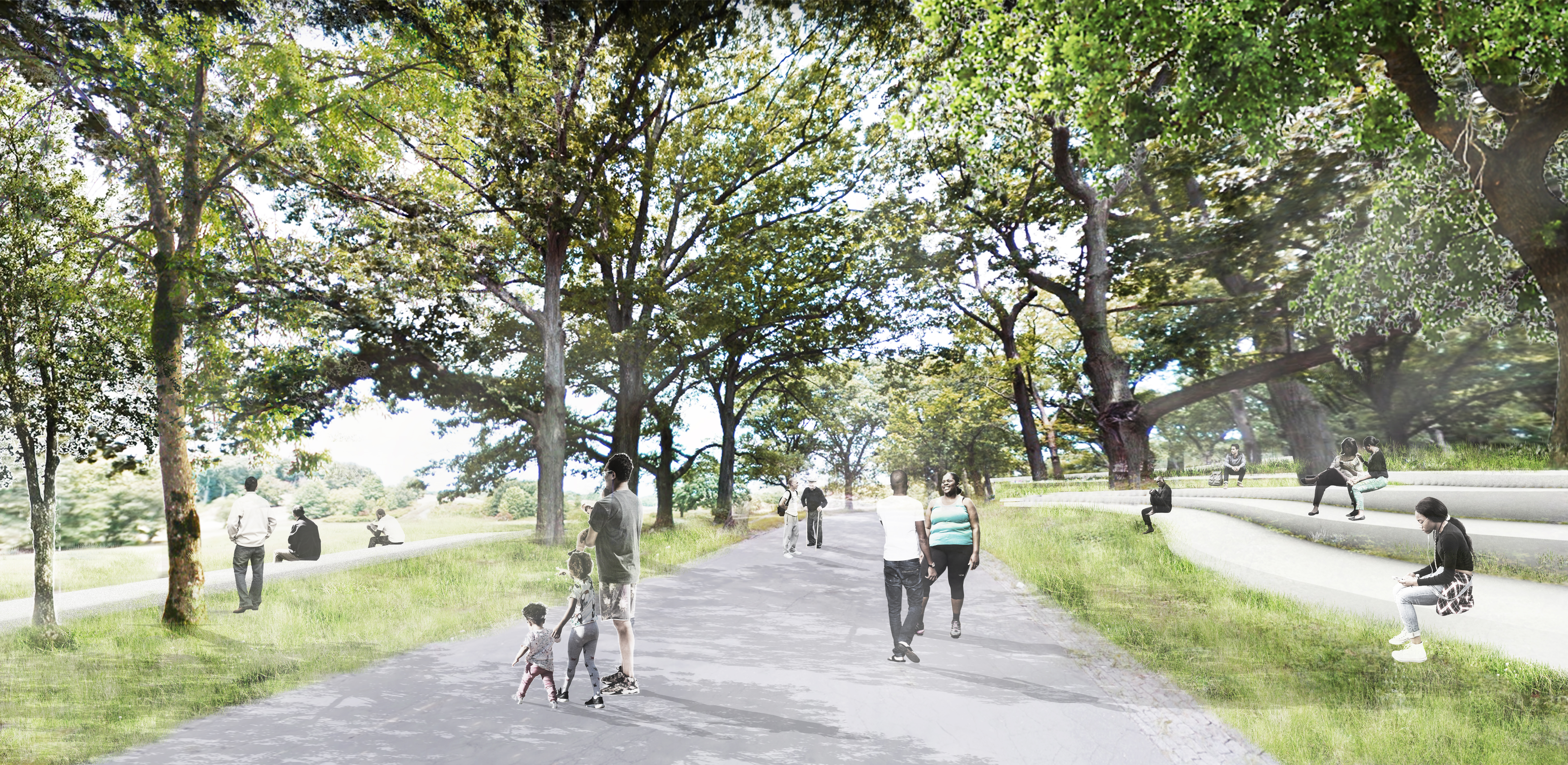 Focus Area Site Design - Park View