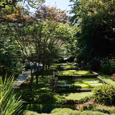 Botanical gardens of Terra Nostra