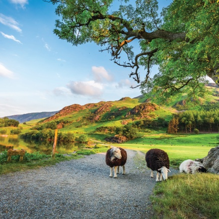 British Landscapes featuring England, Scotland and Wales