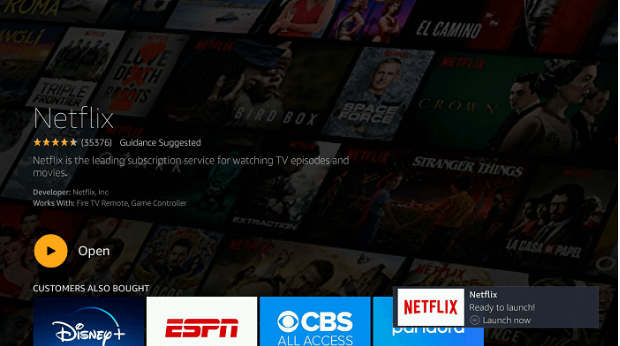 How to install Netflix on Firestick and Watch it 9