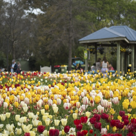 Treasures of Holland featuring Floriade and Amsterdam By Ferry
