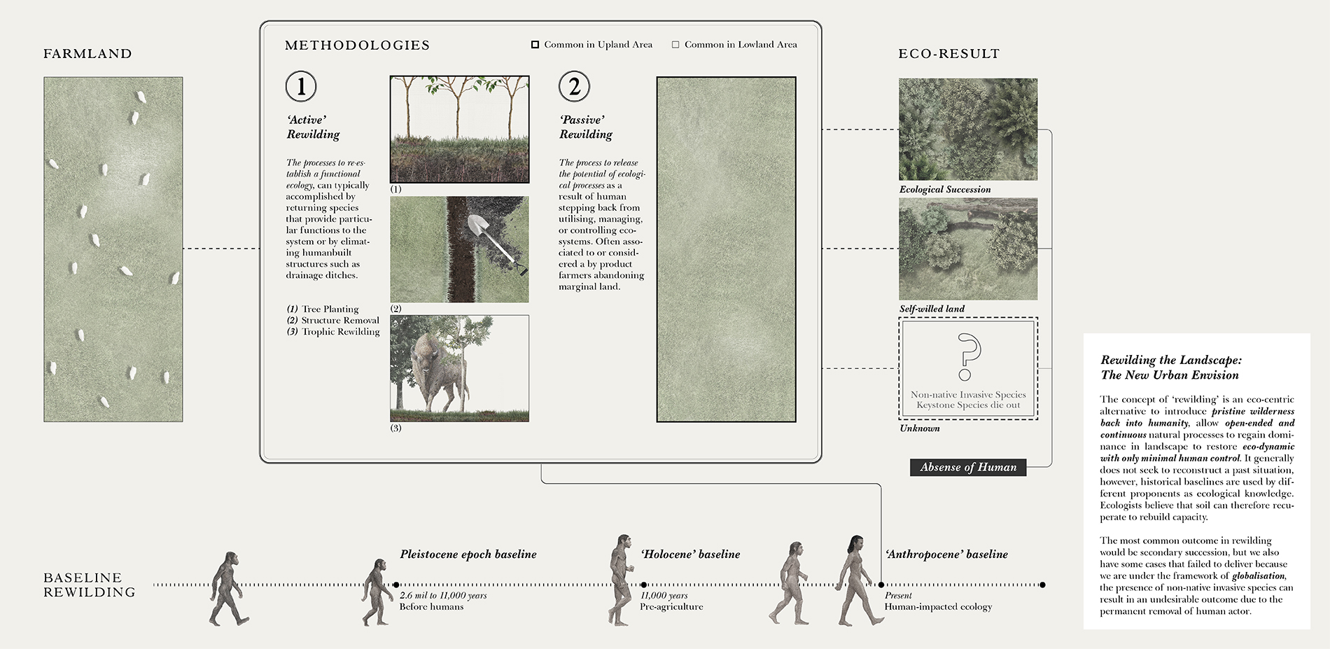 Rewilding the Landscape: The New Urban Envision