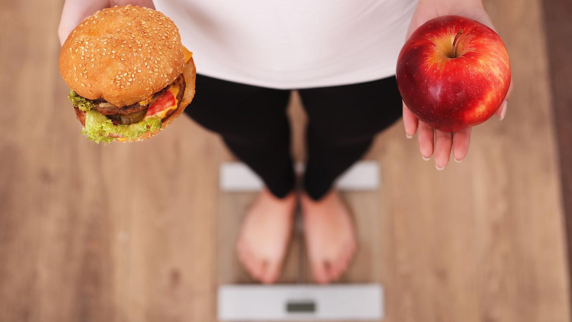 Représentation de la formation : PEC17 - Obésité et comportement alimentaire – niveau 2