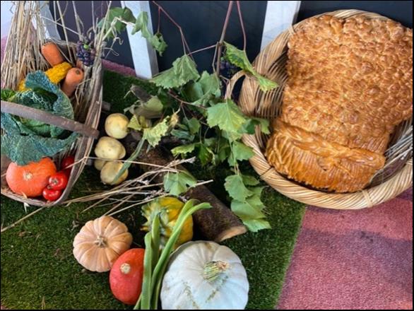 harvest 1.png