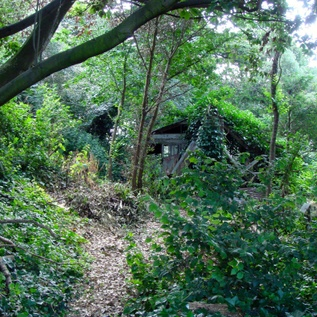 indian summers channel 4 film location