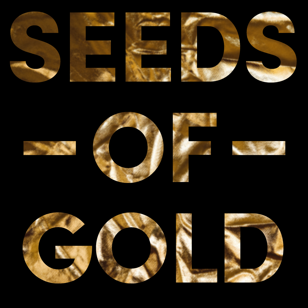 Karl Martindahls nya EP: Seeds of Gold