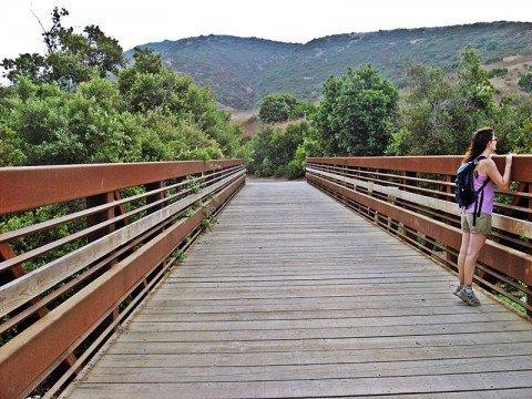 bridge-crystal-cove-state-park