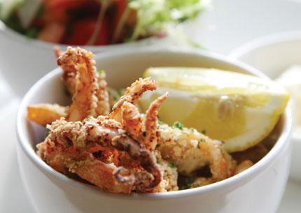 Preston Park squid