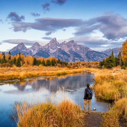 Yellowstone Wildlife Trails - Hotels