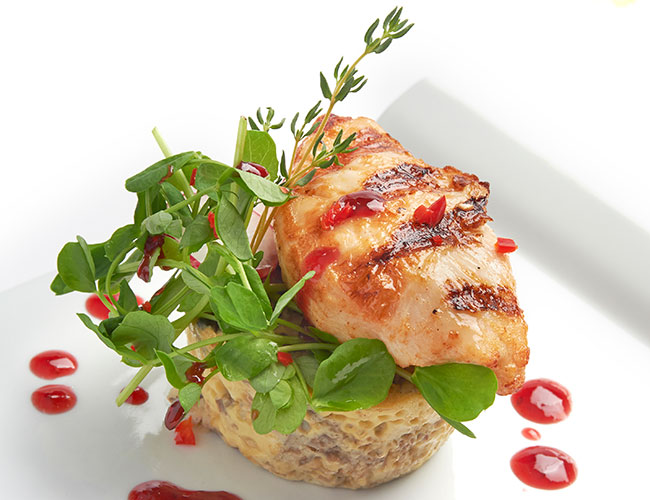 Flagship Europe cooked chicken breast