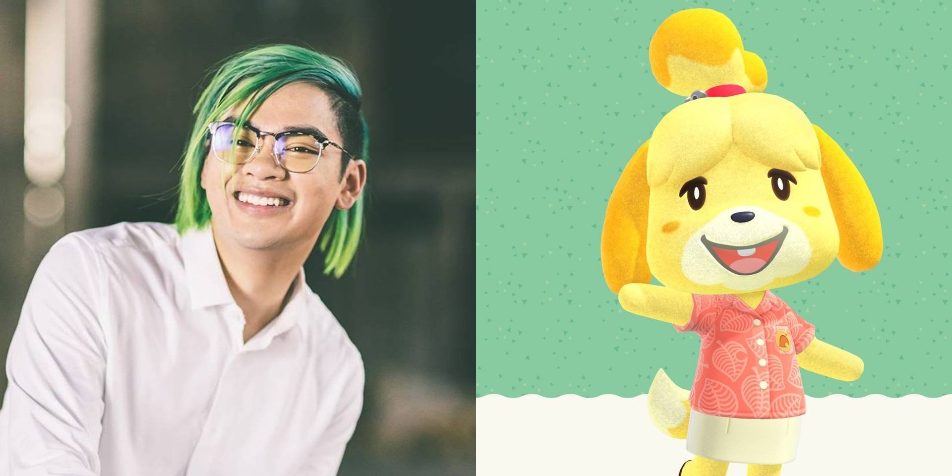 Shawn Wasabi drops playful Animal Crossing tribute in time for game release – listen