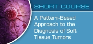 A Pattern-Based Approach to Soft Tissue Tumors