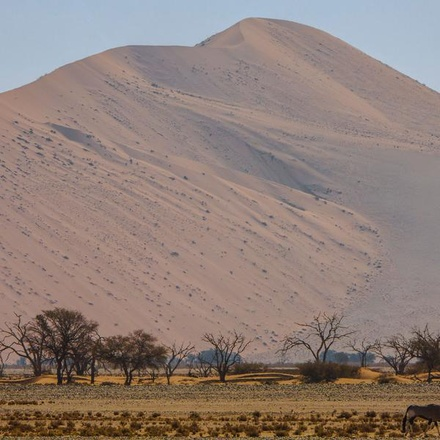 Cape Town, Kruger & Namibia Upgraded