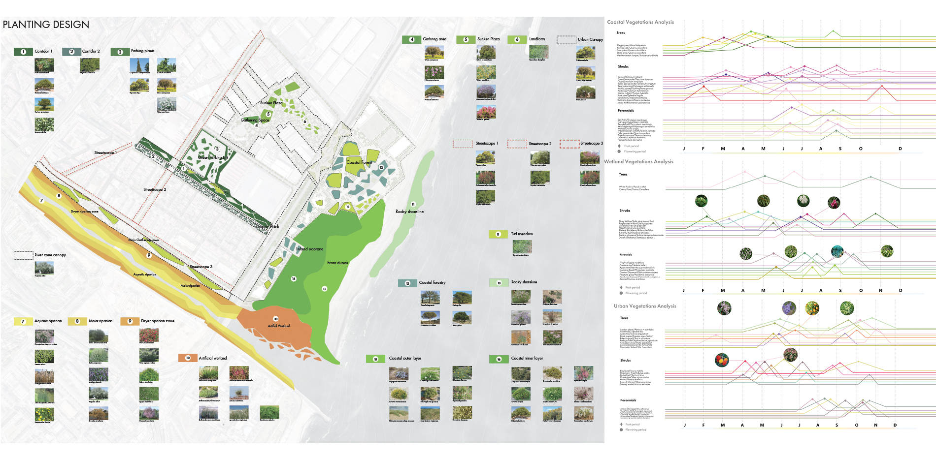 Planting Plans with Vegetation Analysis