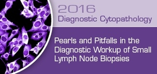 Pearls and Pitfalls in the Diagnostic Workup of  Small Lymph Node Biopsies