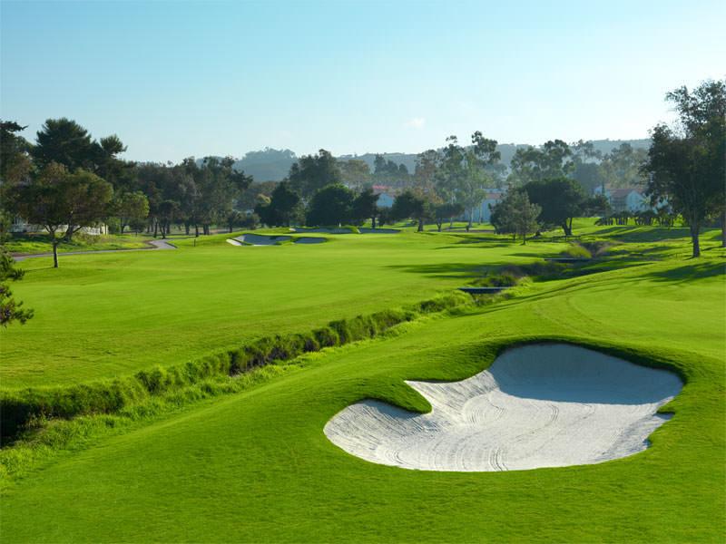 3.0_Golf_Champs_6_800x600