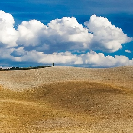 Tuscany Gourmet Cooking & Wine Tour