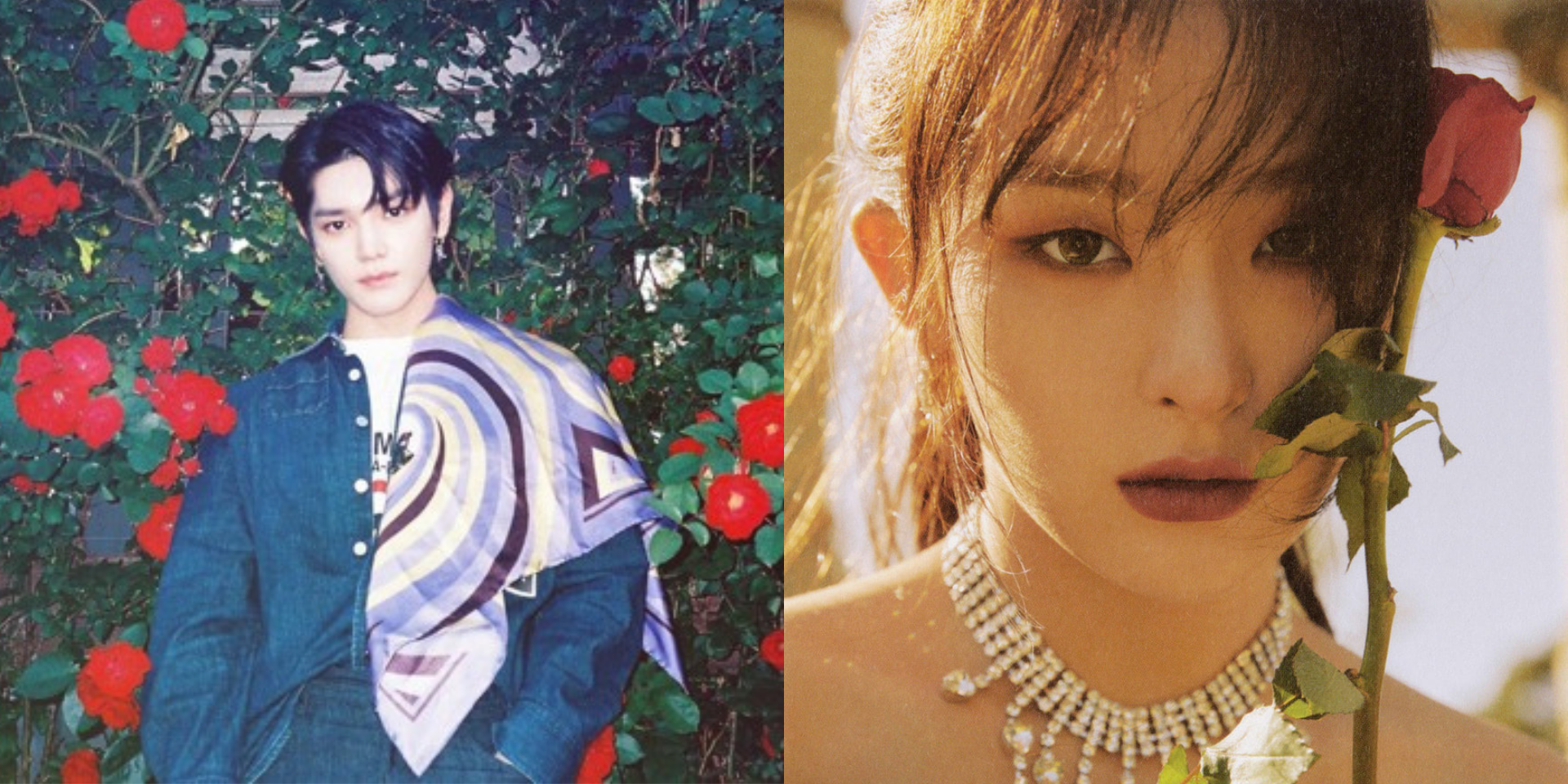 NCT's Taeyong and Red Velvet's Seulgi drop collaborative track 'Rose' – listen