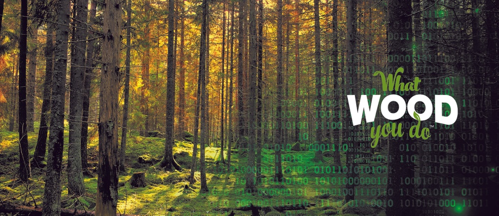 Join the final of the What wood you do innovation competition online!