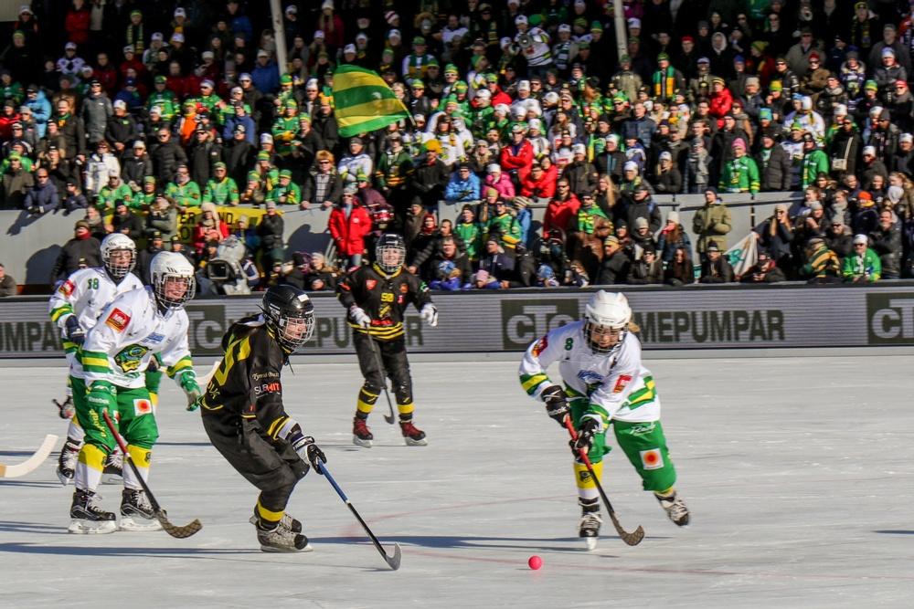 Uppsala bjuder in till bandyfest igen. Foto: Malin Kellhorn