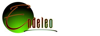 http://endeleoinstitute.org