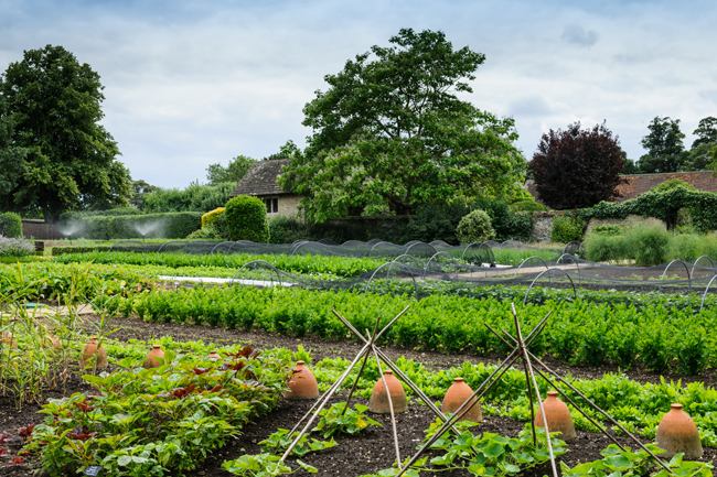 Le Manoir kitchen gardens