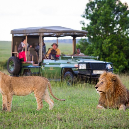 """Nyati BIG-5 Classic """"Out of Africa"""" Safari Experience: Lower Zambezi, Kafue and South Luangwa National Parks"""