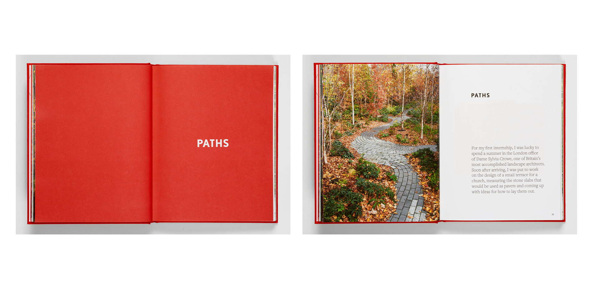 """""""Paths"""" Chapter"""