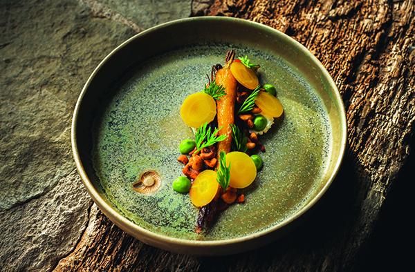 Carrot, cheese, hazelnut, dill