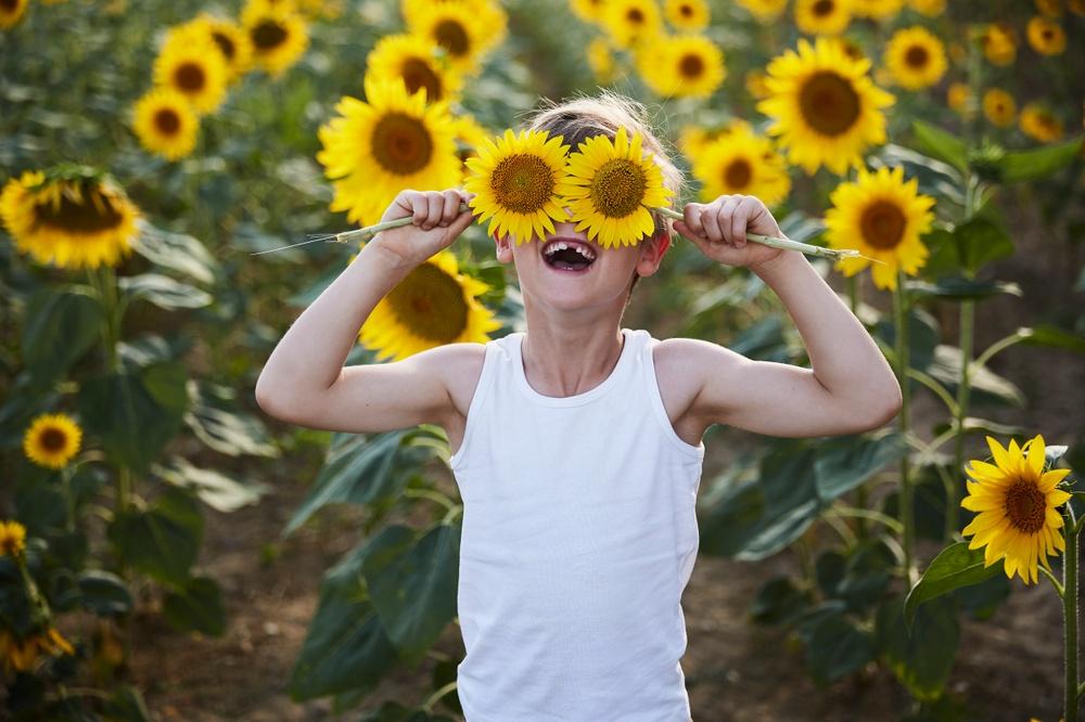 Pojke med solrosor