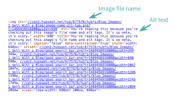 You're reading this because you're checking out this image's file name and alt tags. It's so meta, it's scary.