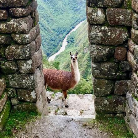 Inca Trail & Rainbow Mountain 6D/5N