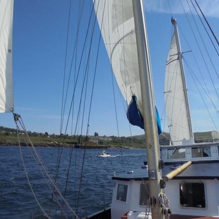 The Inner Hebrides Wildlife Cruise