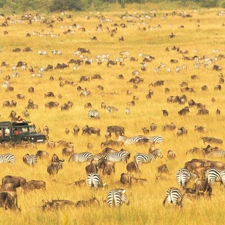 Tanzania Camping Safari-Northern Circuit