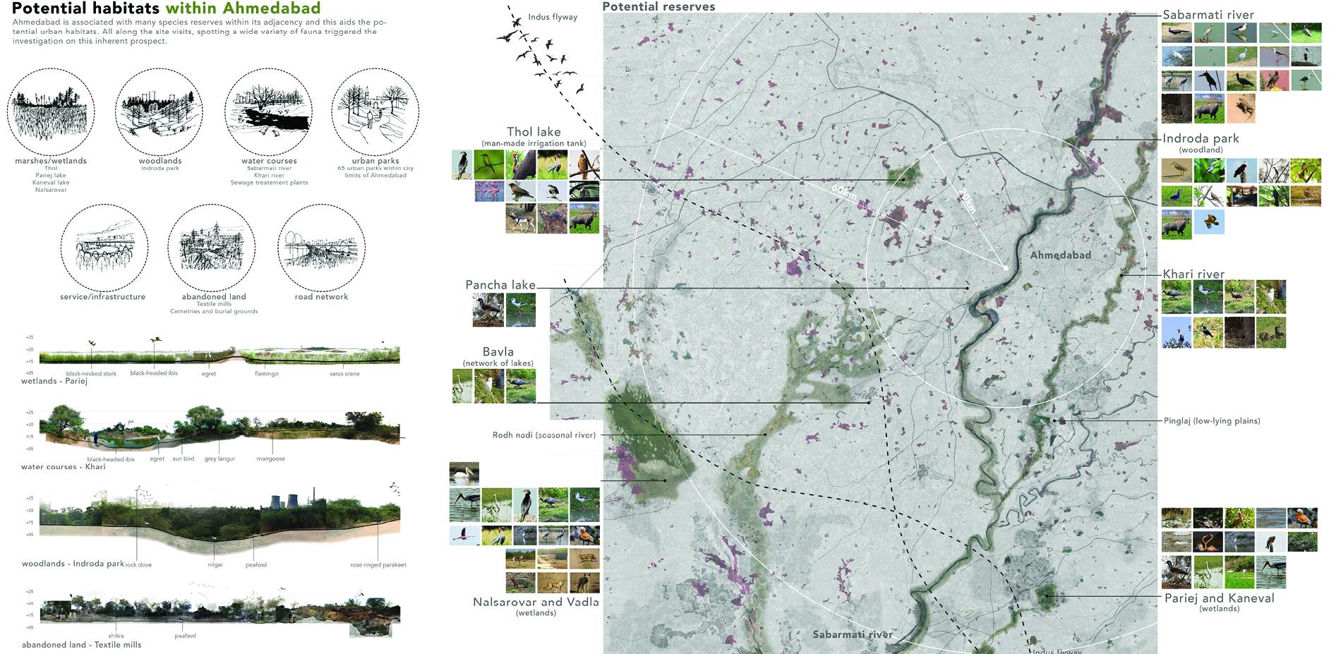 Potential habitats within Ahmedabad