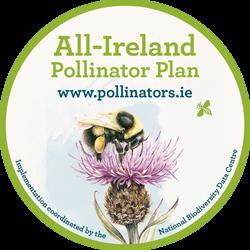 Pollinator Plan Juniors