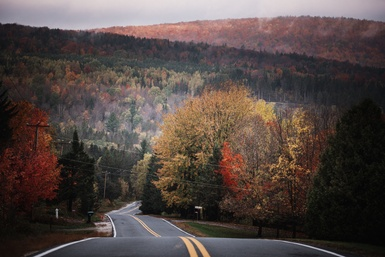 L'automne en 8 idées qui décoiffent