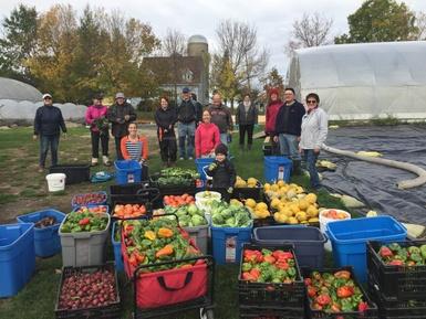 Artha-Récolte: plus de 13 tonnes de fruits et légumes sauvés et partagés