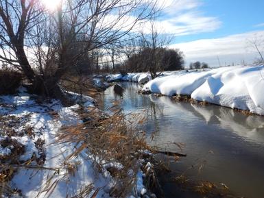 Nos milieux humides, hydriques et naturels mis sous la loupe