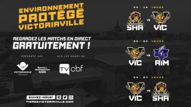 Les Tigres à la TVCBF durant l'environnement protégé de Victoriaville !