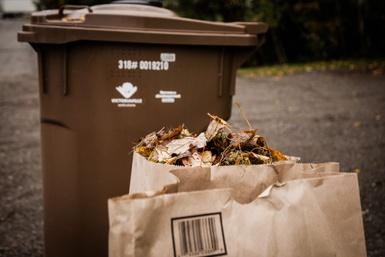 Collecte de surplus de feuilles: Victoriaville distribue des sacs de papier