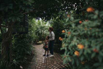 TVR: Souvenirs des tropiques - Crédit photo: Les Maximes