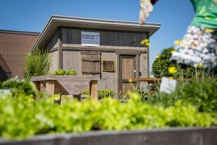 Le cabanon des jardiniers du Jardin des rendez-vous de Victoriaville