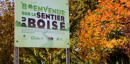 Le Sentier du Boisé est un projet de valorisation d'espace boisé en milieu urbain
