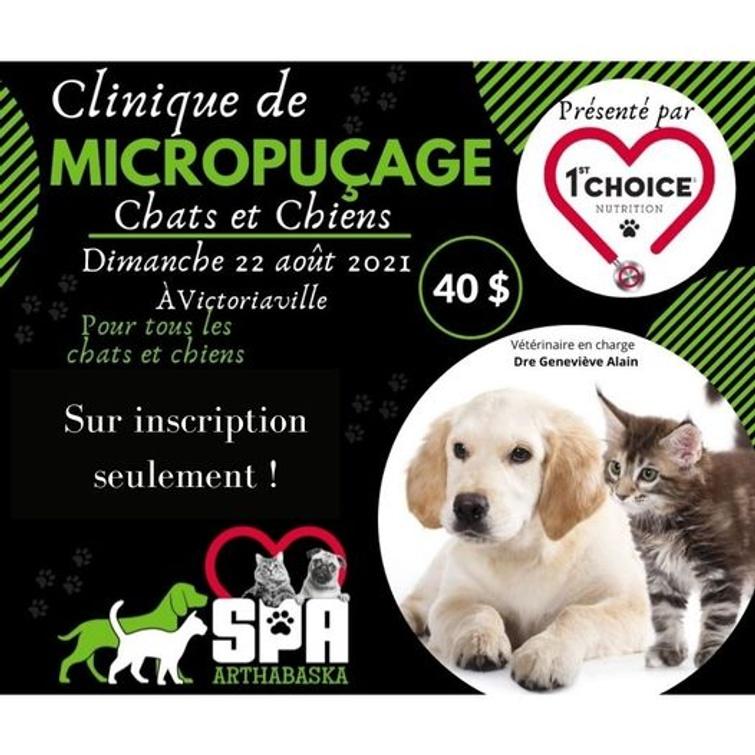 Clinique de micropuçage