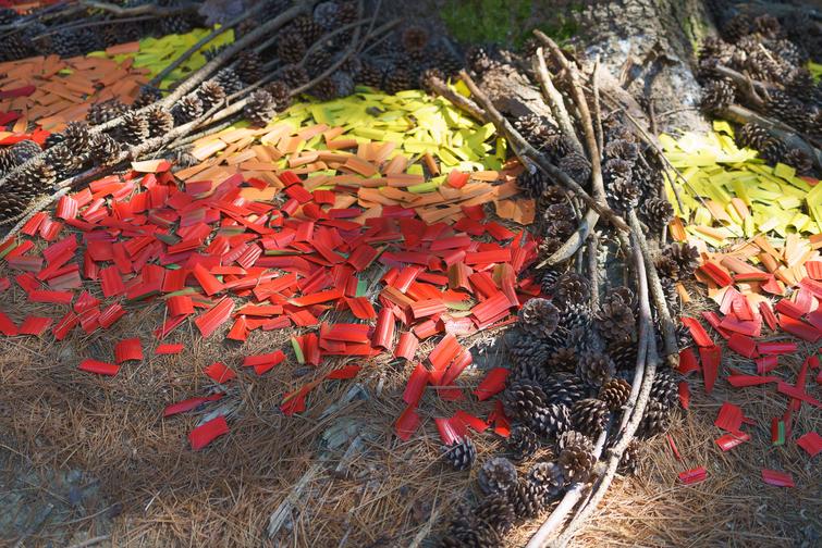 Oeuvre d'Andréanne Laberge réalisée à partir de feuilles, de cocottes, de branches et de peinture. Champ libre 2019.