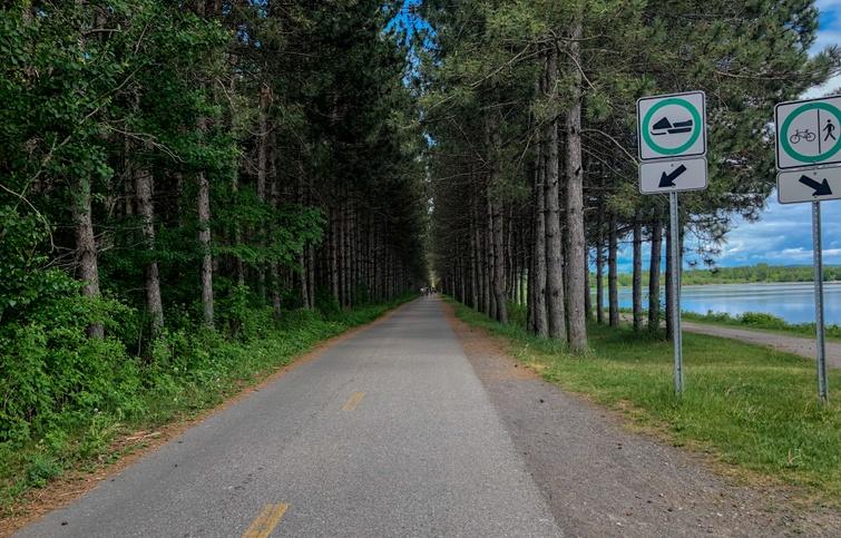 Travaux d'entretien forestier au réservoir Beaudet