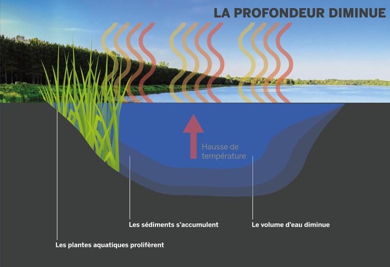 Visualisation de la problématique liée à l'accumulation des sédiments dans le réservoir Beaudet de Victoriaville