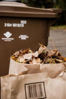 Distribution gratuite de sacs de papier pour surplus de feuilles